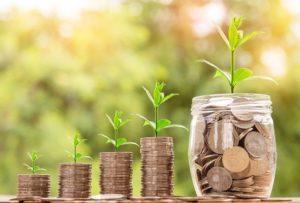 pieniądze słoik natura wzrost