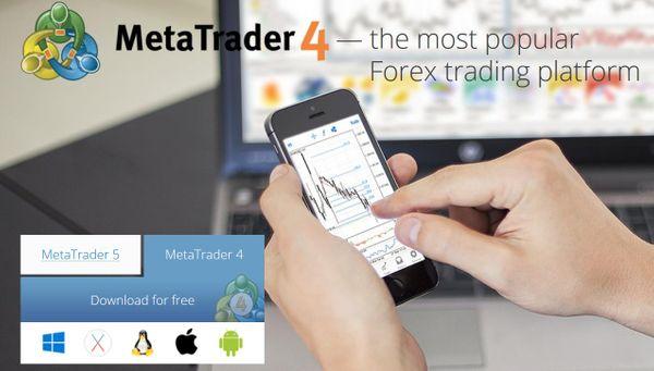 Meta Trader 4 widok strony głównej Trading