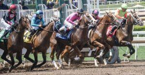 Gonitwa koni początek wyścigu konie w cwale